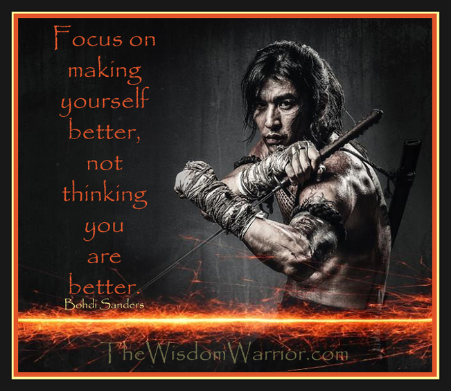 The Wisdom Warrior Dr Bohdi Sanders Warrior Philosophy And Motivational Teachings