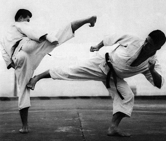 Karate martial arts training