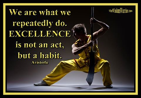 Excellence in Martial Arts - Bohdi Sanders